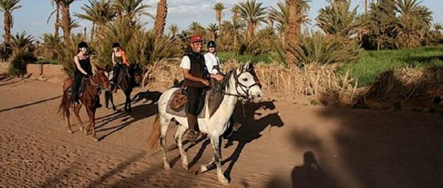 1-hour-horse-riding-marrakech