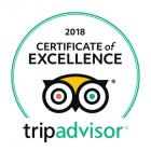 -trip-advisor-reviews