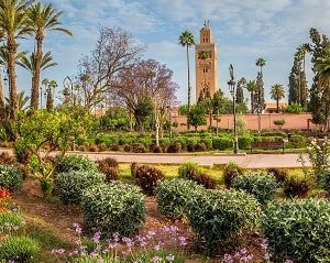 marrakech airport transfers to city hotels